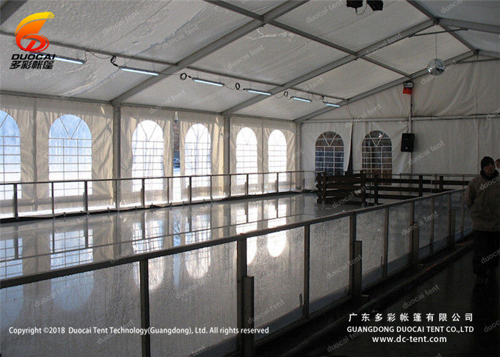 in the ice rink venues