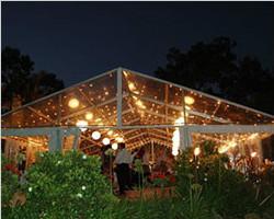 Transparent PVC roof tent for celebration