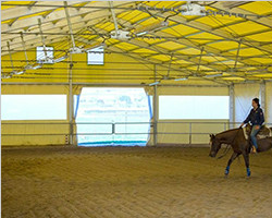 Racing court sport tent with yellow PVC fabric
